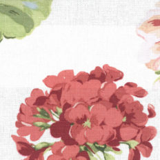 geranium pale cranberry swindon